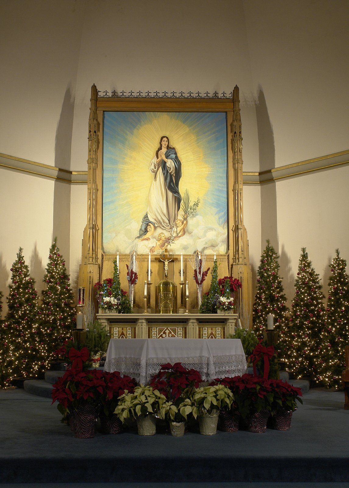 Mary Tapestry at Christmas