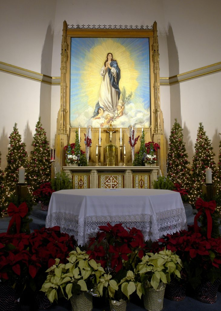Immaculate Altar at Christmas