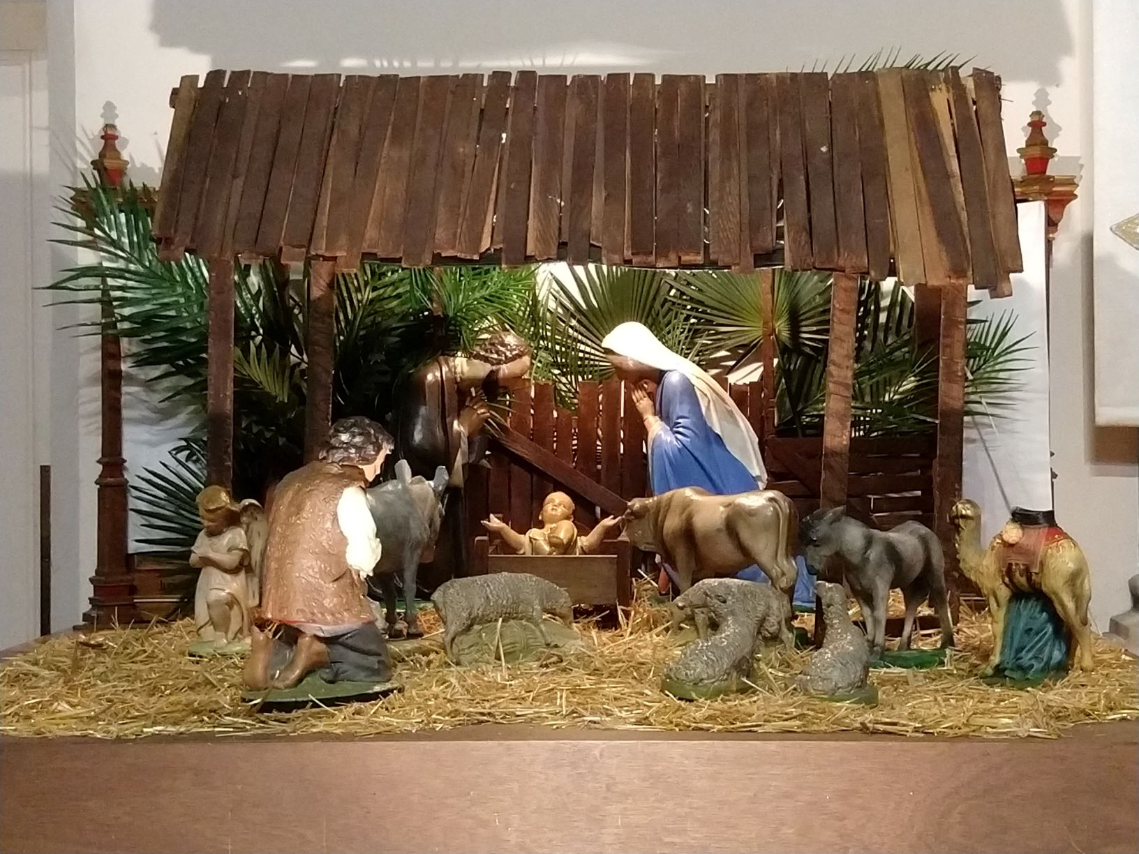 A photo of the nativity scene at Immaculate Conception Church